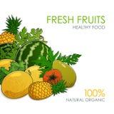 Sappige Tropische Vruchten en Bessen Stock Foto's