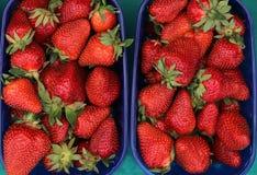Sappige verse organische aardbeien Stock Foto's