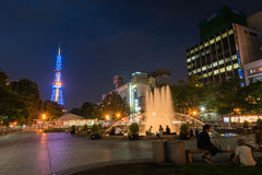 Sappora tower and garden at night in summer Royalty Free Stock Images