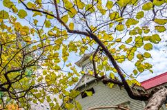 Sapporo Clock Tower in autumn. Royalty Free Stock Photos
