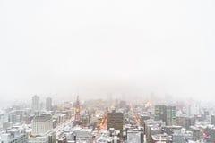 Sapporo Fernsehturm in Sapporo mit Kopienraum, schneebedeckter Tag Lizenzfreie Stockbilder