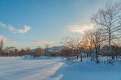 Sapporo i vintersäsong Royaltyfri Fotografi