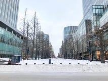 SAPPORO, JAPÓN - 17 DE DICIEMBRE DE 2016: Gobierno anterior Offic de Hokkaido Imagenes de archivo