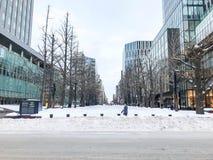SAPPORO, JAPÓN - 17 DE DICIEMBRE DE 2016: Gobierno anterior Offic de Hokkaido Fotos de archivo