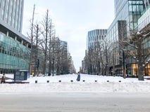 SAPPORO, JAPÓN - 17 DE DICIEMBRE DE 2016: Gobierno anterior Offic de Hokkaido Imagen de archivo libre de regalías