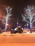 SAPPORO, JAPÓN - 17 DE DICIEMBRE DE 2016: La Navidad celebra en el parque de Odori Imagenes de archivo