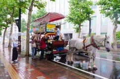 SAPPORO, JAPÓN -27 JULIO DE 2014: Carretero con el caballo blanco y uni Foto de archivo libre de regalías