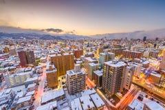 Sapporo Japan vinterhorisont arkivfoto