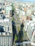 Sapporo sikt från ett torn Royaltyfria Bilder