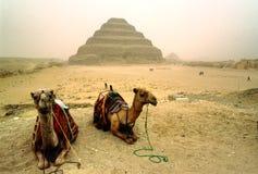 Saqqara, Egypt. stock photo
