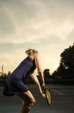 Saque do por do sol Foto de Stock Royalty Free