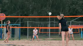 Saque do voleibol da mulher Mulher que prepara-se a para servir o voleibol ao estar no movimento lento da praia vídeos de arquivo