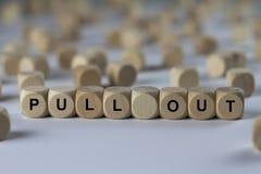 Saque - el cubo con las letras, muestra con los cubos de madera Fotografía de archivo libre de regalías