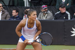 Sara errani brindisi fed cup Stock Photos