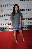 Sara Evans Royalty Free Stock Image