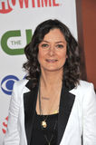 Sara Gilbert Royalty Free Stock Photography