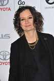 Sara Gilbert Stockfotos