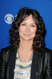 Sara Gilbert,The Fall Royalty Free Stock Photo