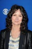 Sara Gilbert,The Fall Royalty Free Stock Photo