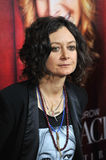 Sara Gilbert Stock Photos