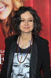 Sara Gilbert Royalty Free Stock Photo