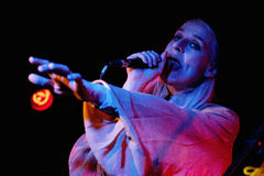 Sarah Assbring, singer of El Perro del Mar Stock Photo