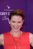 Sarah Drew at the 2012 Chrysalis Butterfly Ball, Private Location, Los Angeles, CA 06-09-12 Royalty Free Stock Photography