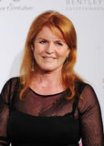 Sarah Ferguson Stockfotos