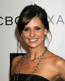 Sarah Michelle Gellar. BCBG MaxAzria Flagship Store Opening Beverly Hills, CA August 18, 2005 royalty free stock images