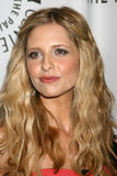 Sarah Michelle Gellar Royalty Free Stock Photos