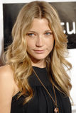 Sarah Roemer on the red carpet Royalty Free Stock Photography