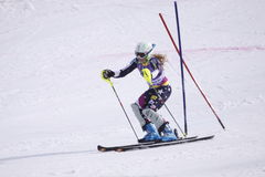 Sarah Schleper - esquiador alpino americano Imagens de Stock