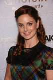 Sarah Wayne Callies Stock Photography