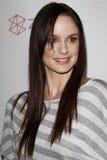 Sarah Wayne Callies Stock Images