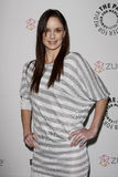 Sarah Wayne Callies Royalty Free Stock Image