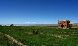 sarai carvan del Kirghizstan Fotografie Stock Libere da Diritti