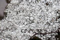 Saraiva feita sob medida com uma moeda maior, pedras de granizo na terra após a chuva de granizo foto de stock royalty free