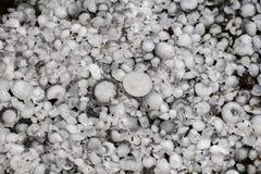 Saraiva feita sob medida com uma moeda maior, pedras de granizo na terra após a chuva de granizo imagens de stock