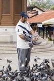 Sarajevo, Bosnie-Herzégovine, le 16 juillet 2017 : L'homme alimente des pigeons à Sarajevo Image libre de droits