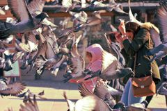Sarajevo, Europa 09 02 2018, cuadrado de ciudad con la mujer y niño rodeado volando palomas Imagen de archivo