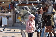 Sarajevo, Europe 09.02.2018, city square with mother and daughter feeding pigeons Stock Photography