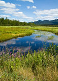 Saranac River Stock Photos