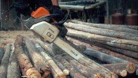 SARANPAUL, RUSLAND 30 JUNI 2017: Kettingzaag in actie scherp hout Mensen scherp hout met zaag, stof en bewegingen stock videobeelden