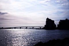 Sarasota. Мексиканский залив Стоковые Фотографии RF