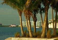 Sarasota from Bird Key Stock Photo