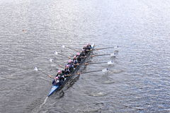 Sarasota Crew races in the Head of Charles Regatta Women's Youth Eights Stock Images
