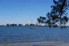 Sarasota fjärd Florida Royaltyfri Fotografi
