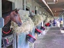 Saratoga die Backstretch-Stallen rennen royalty-vrije stock foto