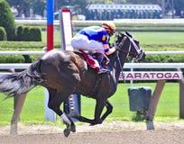 Saratoga het Rennen Foto's Stopchargingmaria royalty-vrije stock fotografie