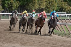 Saratoga Racetrack_7678-1S. Race Horses and Jockeys Head Down the Home Stretch Royalty Free Stock Images